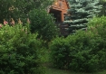 domek Miś w zieleni